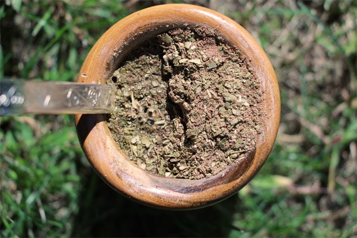 chocolate prophecy yerba mate