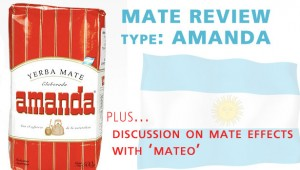 Amanda Mate Review and The Effects of Yerba Mate