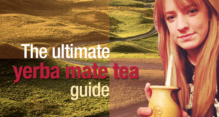 Yerba Mate Tea Guide